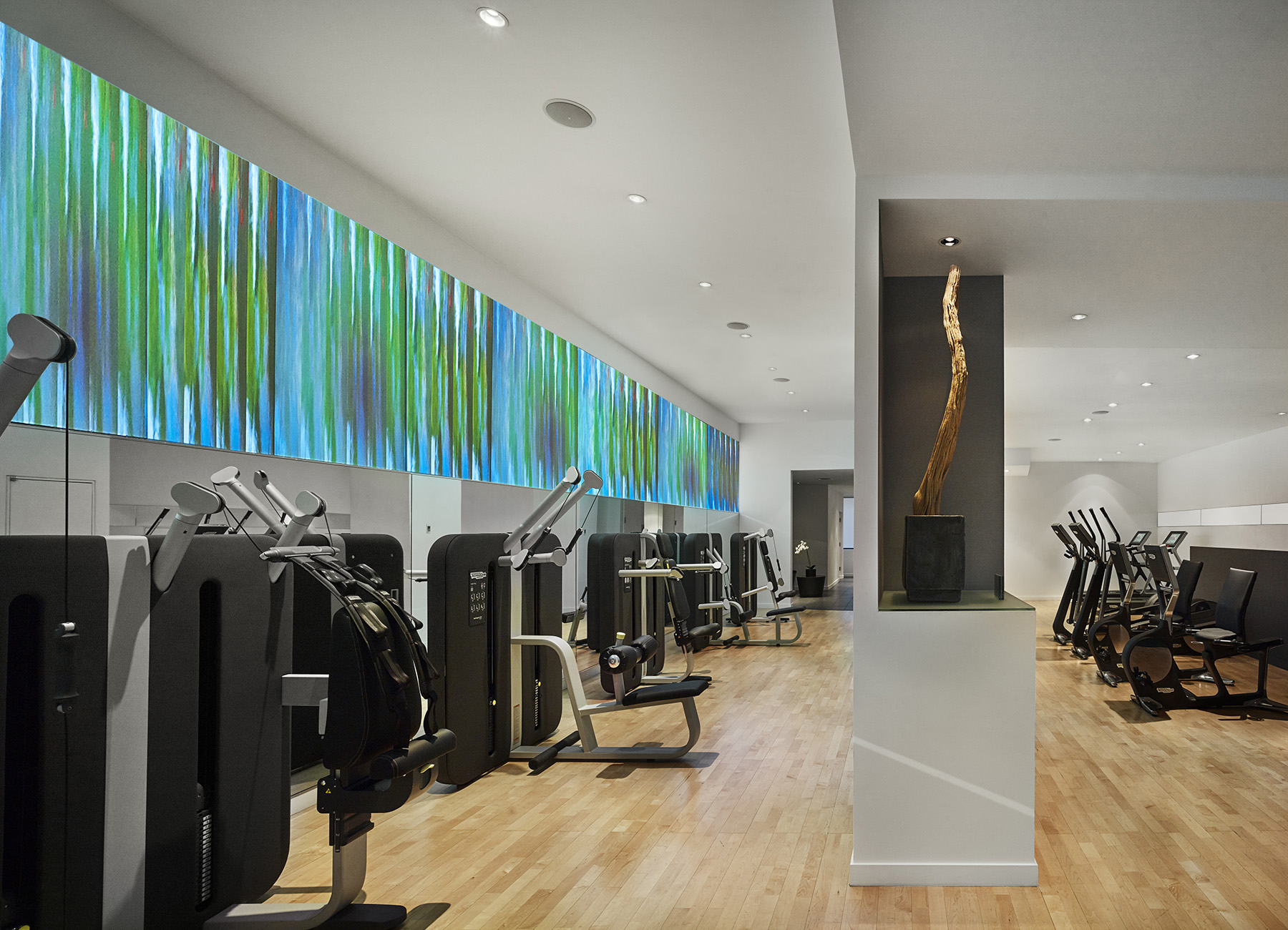 AKA Central Park fitness center with artwork and state-of-the-art cardio equipment