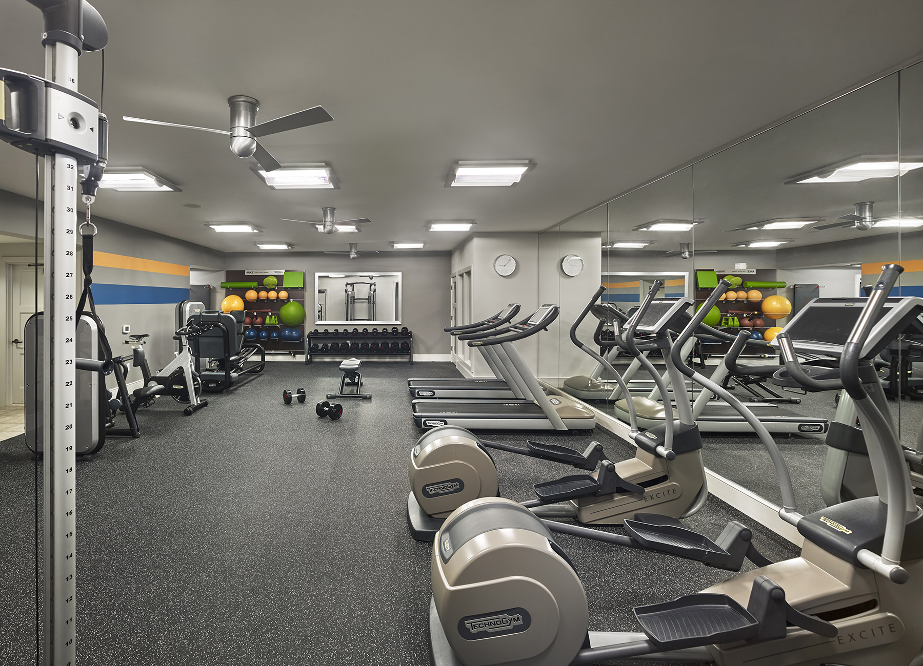 Modern fitness facility with cardio machines, free weights, and yoga balls